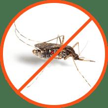 Απεντόμωση Κουνουπιών