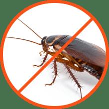 Κατσαρίδες Απολύμανση